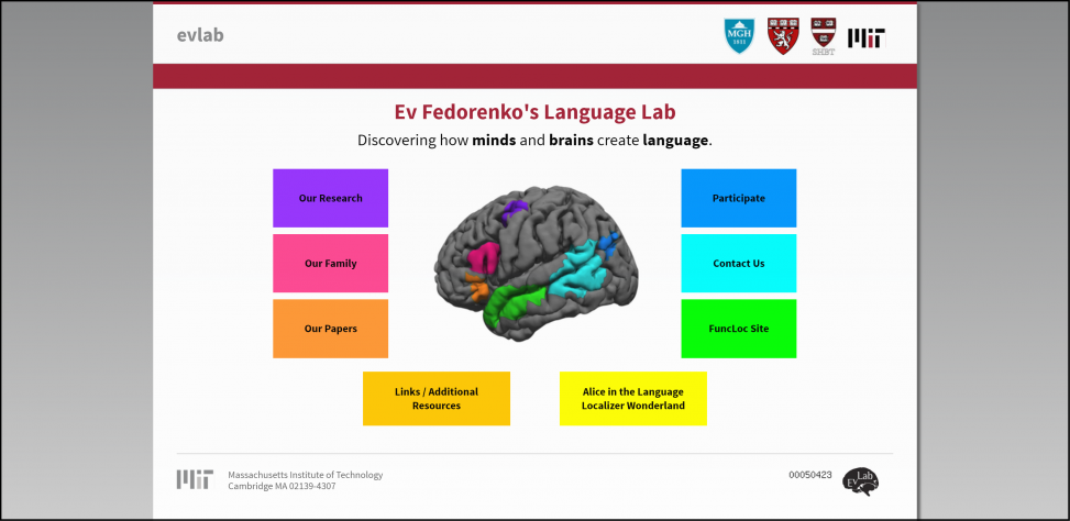 Fedorenko Website Screenshot